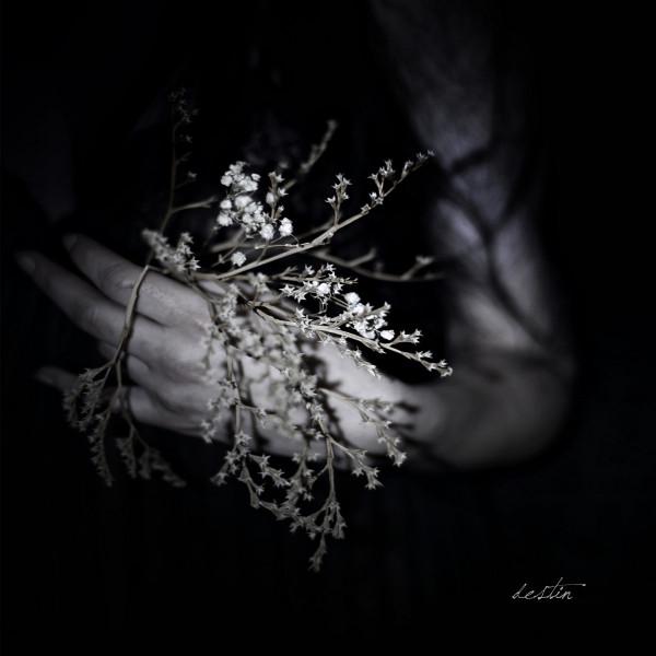 Clouds – Destin, LP (黑色)