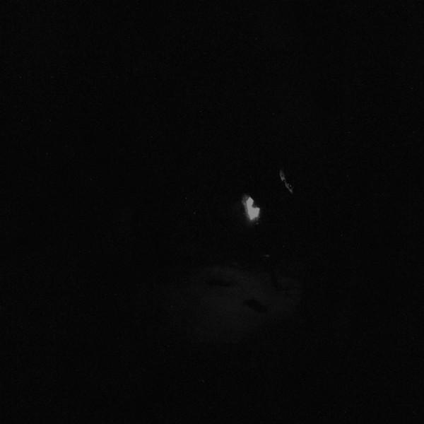 Paysage D'Hiver – Nacht, 2xLP